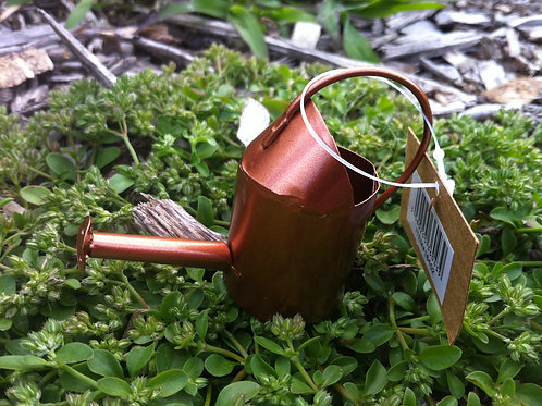 Fiddlehead copper watering can