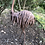 Thumbnail: Metal Emu Garden Sculpture