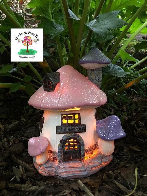 Solar Mushroom Tooth Fairy School