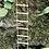 Thumbnail: Fiddlehead mini rope ladder