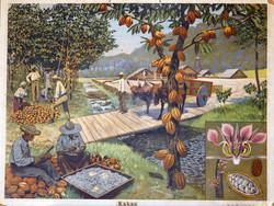 Skolplansch, kakao 50 tal