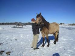 Winter hugs