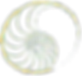 logotype gold_edited.png