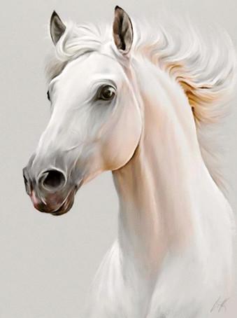 Horse Portrait 2020