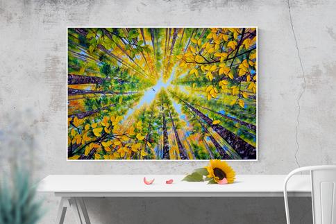 Waldbilder auf Leinwand - Sale