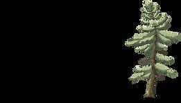 Tallen-logo.png