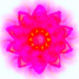 Hot Pink Abstract