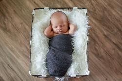 Newborn Pictures-Newborn Pictures-0025