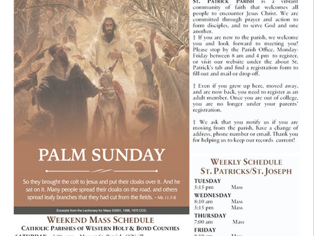 Sunday, March 28th 2021 - Palm Sunday