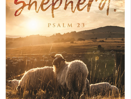 Sunday, July 18th, 2021 - 16th Sunday in Ordinary Time