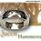 "Thumbnail: ""Queen Hammered"""