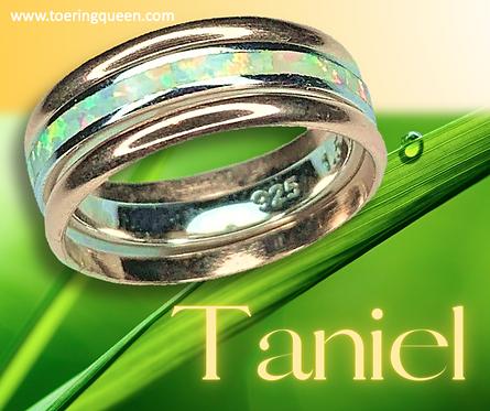 """Taniel"""