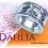 "Thumbnail: ""Dahlia"""