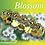 "Thumbnail: ""Blossom"""
