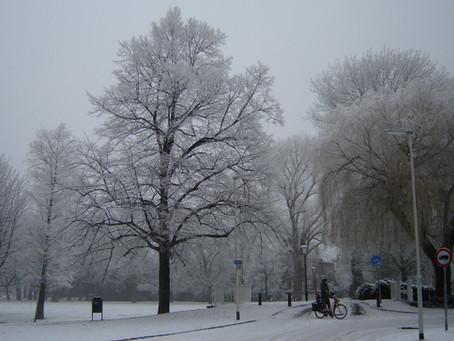 Winter Stilte