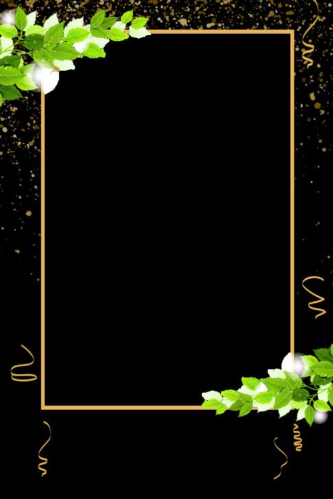 1 ivy