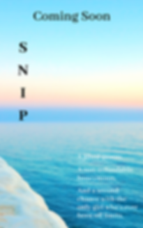S N I P-temp cover for GR.png