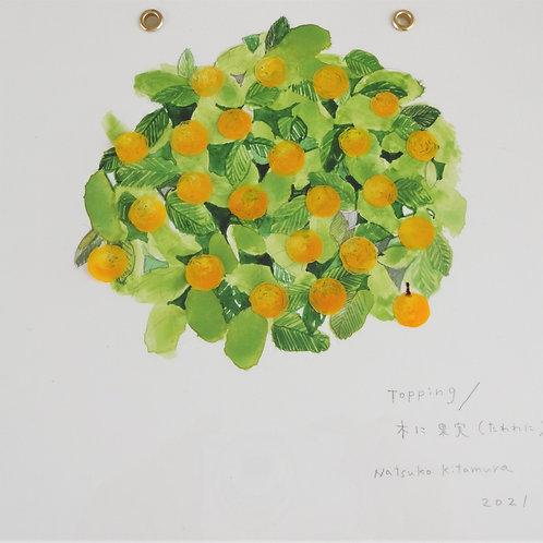 Topping/ 木に果実