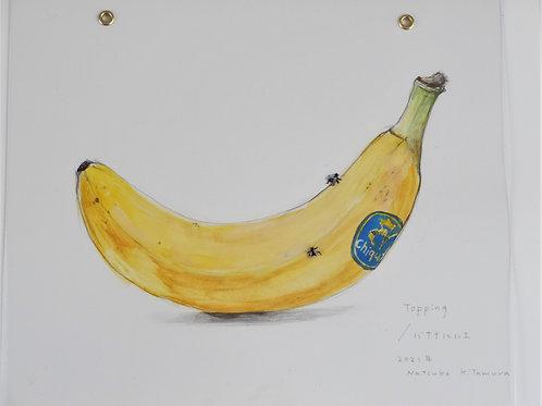 Topping/ バナナにハエ