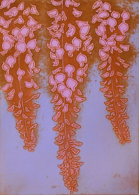 wisteria    B-1