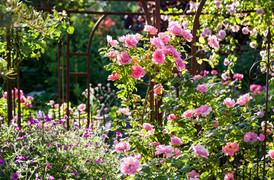 Le Jardin des sens, Hans Massler, Switzerland