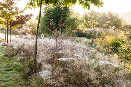 Les Jardins de la poterie Hillen, France