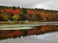 The Viking Motel, Wilmington VT - Foliage in Southern Vermont