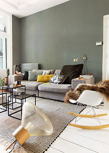 vert dans le salon