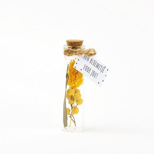 Droogbloem boeket yellow 8cm