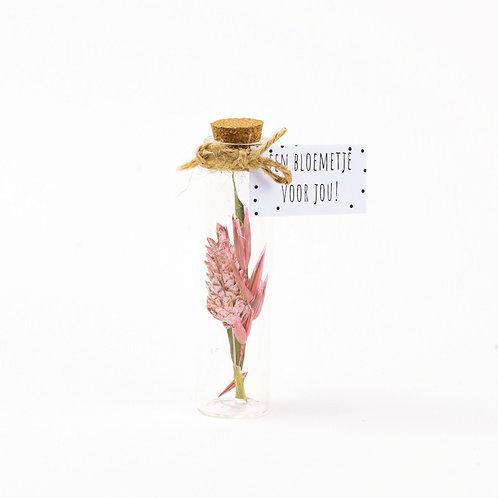Droogbloem boeket pink 8cm