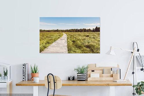 Landscape Hoge Venen II