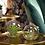 Thumbnail: Tillandsia rond glas medium