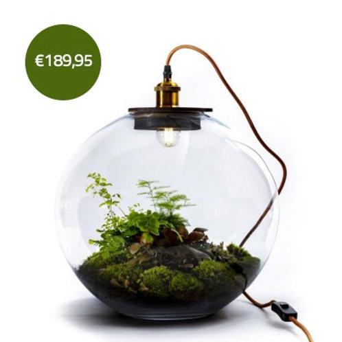 Demeter met LED-lampje - Growing Concepts