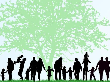 Online Genealogy: The Top 3 Family Tree Builders