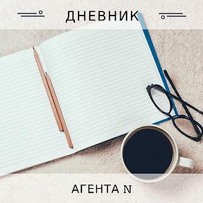 Дневник агента основа.jpeg