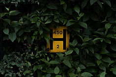 pau-casals-YLKs1gy8k64-unsplash.jpg
