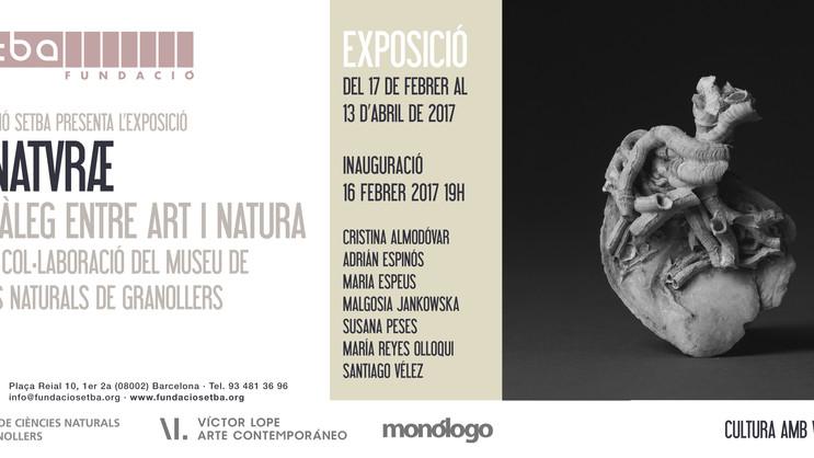 De Naturae. Fundación Setba, Barcelona