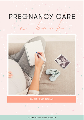 Pregnancy Care Ebook