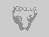 lupulus-equipe-profile.png