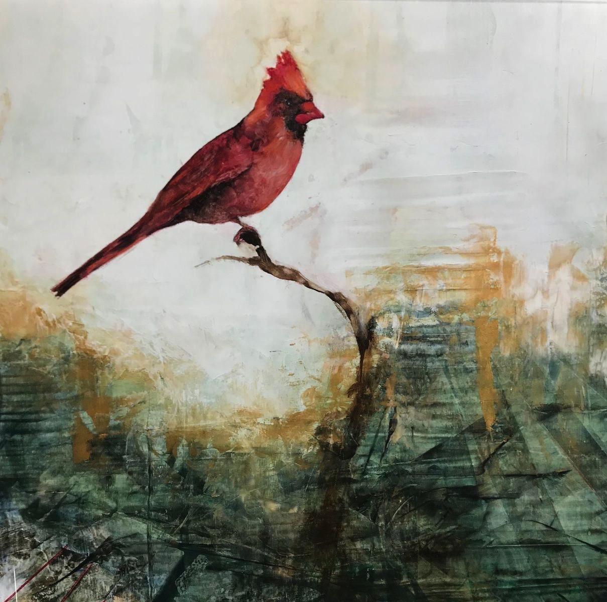 Cardinal at Rest