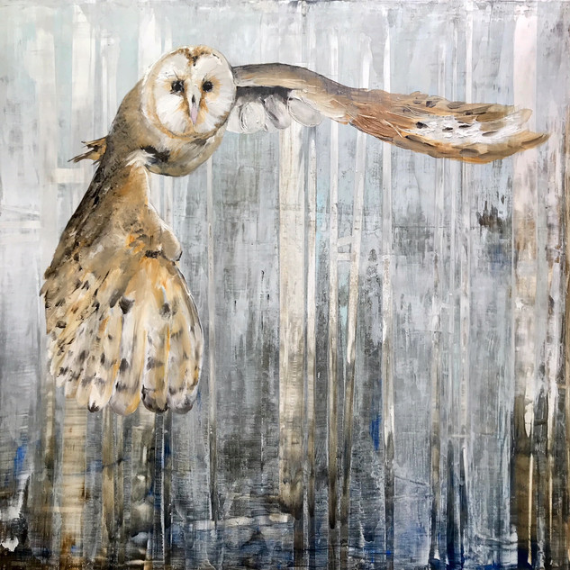 SOLD: Barn Owl