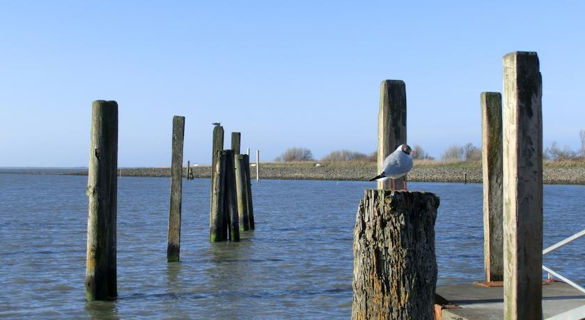 Bensersiel Hafen