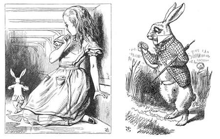 A história tem início quando Alice começa a perseguir um Coelho Branco. Neste ponto Carrol já começa seu jogo psicológico.