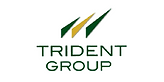 Trident Group.png