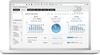 products-analytics-qlik-view-2x.png