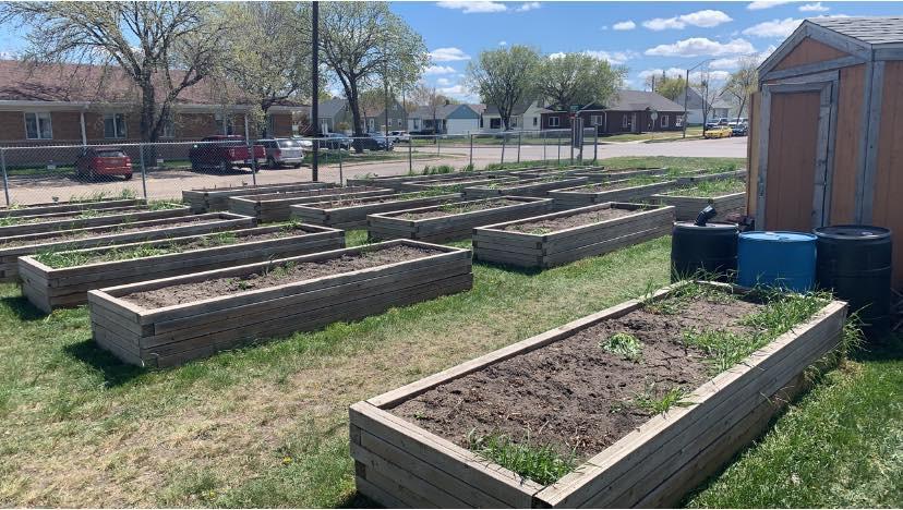 community gardens.jpg