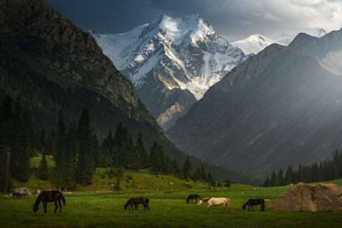 Valley of Dreams.jpg