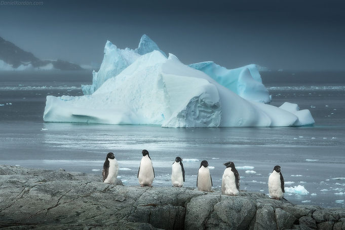 antarctica-photography-expedition-2021-w
