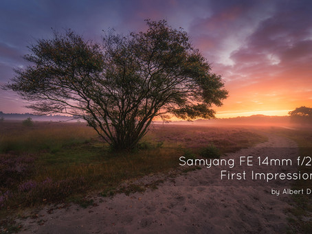Samyang FE 14mm f/2.8 First Impressions