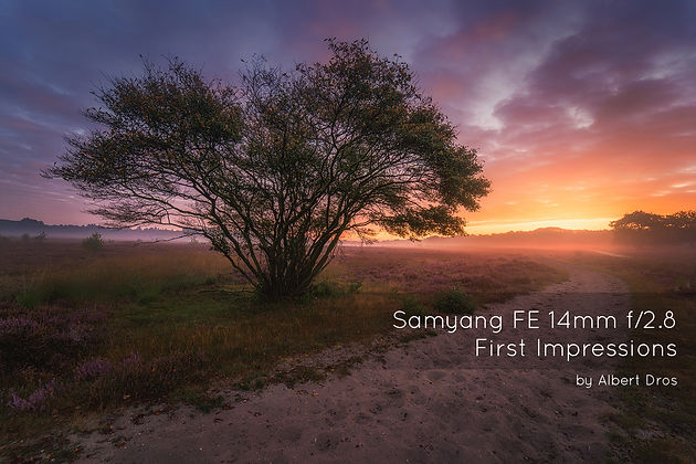 Samyang FE 14mm f/2 8 First Impressions